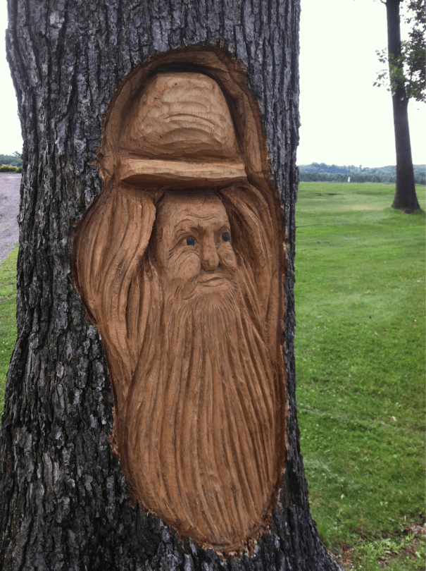 Face on Trees